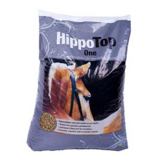 HippoTop One